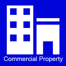 Commercial Property Icon